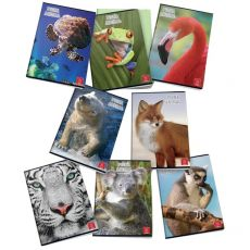 Quaderni A4 Animal World Pigna - A4 - A (righe) - 40+R ff - 02243690A (conf.10) - Pigna